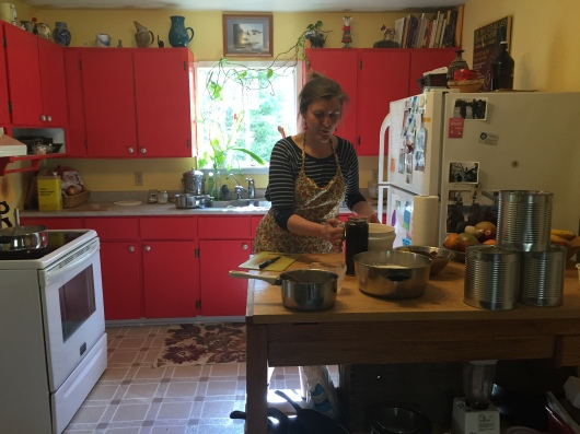 "To get her kitchen certified to make ice cream for sale, Ludwig ""went through the process with our local health unit, you just have to meet certain requirements they laid out... the space is clean, you can't store food on the floor and stuff like that,"" she said. (Clare Bonnyman/CBC)"